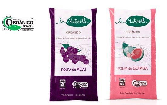 polpa-fruta-natural-bioretro