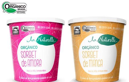 sorvete-natural-sem-leite-bioretro